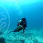 15_04_30_condor_reef_alejandro4_watermarkweb