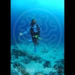 15_04_30_condor_reef_alejandro_kristoffer2_watermarkweb