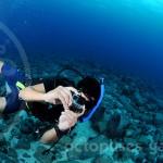 15_04_30_condor_reef_alejandro_watermarkweb
