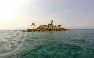 Shark Island (Boratit)