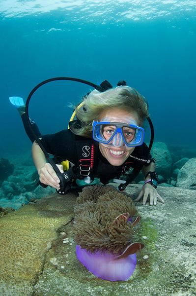 Hege Shark Island